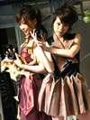 pie_20060326_07